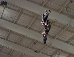 Freestyle Motorcross
