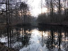 Morgenstimmung im Berliner Tiergarten
