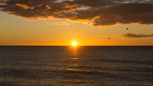 Sunrise, Lever du soleil, Torremolinos, Costa Del Sol, Espagne, Spain - 2923