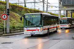 TCL / Irisbus Citelis 12 n°3813