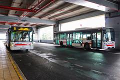 TCL / Irisbus Citelis 12 n°3305 et Iveco Urbanway 12 n°3063