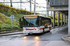 TCL / Irisbus Citelis 12 n°3353