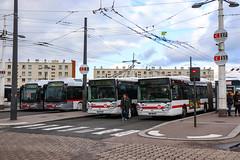TCL / Irisbus Cristalis ETB18 n°1908, Irisbus Cristalis ETB18 n°1904, Irisbus Citelis 18 n°2009 et Irisbus Citelis 18 n°2037