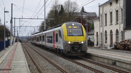 AM 08507 - L162 - NATOYE