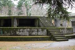 Abandoned Artillery