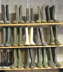 346 -- Collection of wellies -- Rubberboots -- Gummistiefel -- Regenlaarzen
