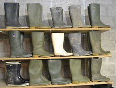 348 -- Collection of wellies -- Rubberboots -- Gummistiefel -- Regenlaarzen