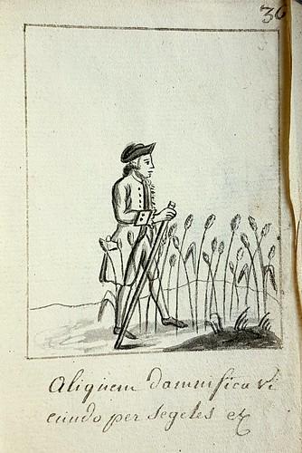 gewassen - crops - cultures