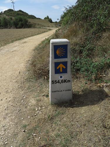 20190914 10 273 Frances Belorado Hügel Bäume Weg Stele Muschelstern gelb Pfeil 554km