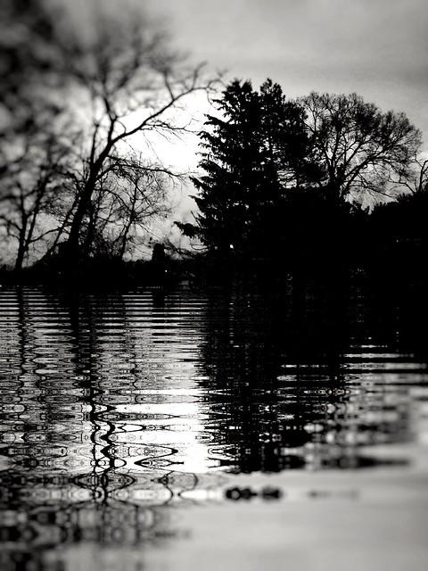 Portrait on the river Styx