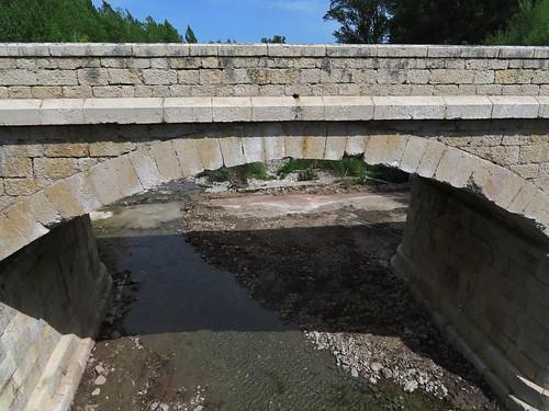 20190914 10 270 Frances Belorado Fluß Brücke Wald