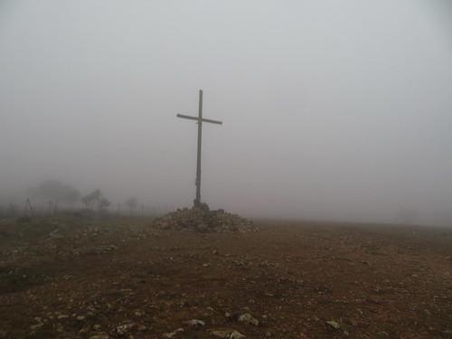 20190916 12 054 Frances Nebel Bäume Baum Steine Weg Kreuz