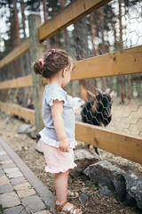 A girl watching a goat through the fence