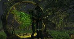 Demon Fairies exist