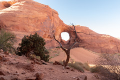 Natural Arch Framed by Tree