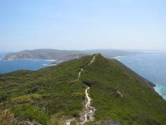 Highest Point of Limestone Head Looking Back - Bald Head Walk, Torndirrup Peninsula, Albany, Western Australia