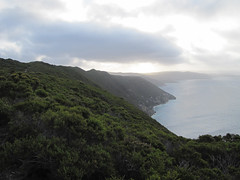 The Walk Back - Bald Head Walk, Torndirrup Peninsula, Albany, Western Australia