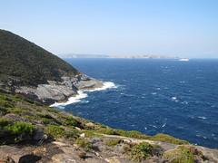 Breaksea Island from Bald Head - Bald Head Walk, Torndirrup Peninsula, Albany, Western Australia