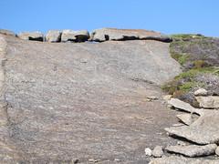 Granite Critters - Bald Head Walk, Torndirrup Peninsula, Albany, Western Australia