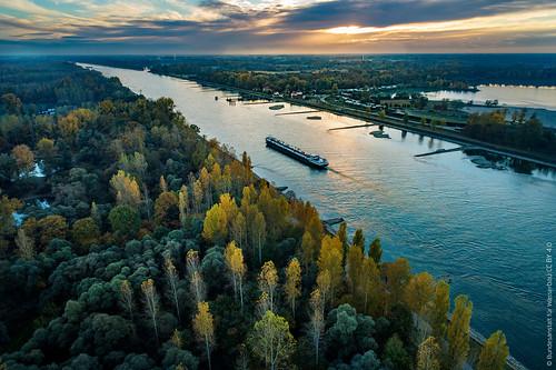Niedrigwasser im Rhein bei Plittersdorf im November 2018