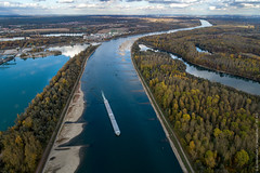 Niedrigwasser im Rhein bei Au am Rhein im November 2018