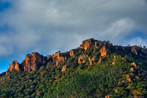 l'esterel au petit matin - Provence - Var 3D0A8711