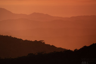 Sunset Layers, Monteverde