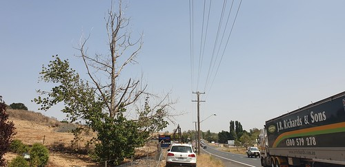 365-2020 08-365 Tier 2 Hazard Tree