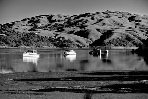 Pauatahanui Inlet Early Morning 14