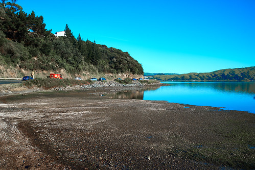 Pauatahanui Inlet Early Morning 06