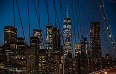 Blue hour from Brooklyn Bridge