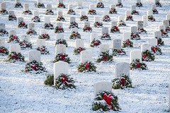 Snow blankets Section 35 at Arlington National Cemetery in Arlington, Virginia, Jan. 8, 2020.