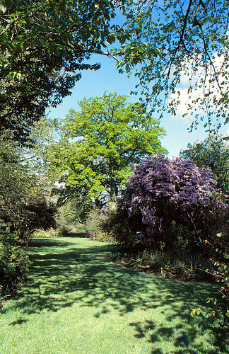 Birr Castle Garden