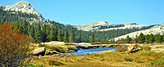 Along the Tuolumne, Yosemite High Country 2019