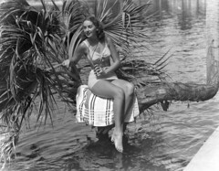 Jackie Bingham in a Jantzen bathing suit posing on the lucky horseshoe palm tree at Silver Springs