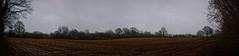 rainy day field | 9. Januar 2020 | Schleswig-Holstein - Deutschland
