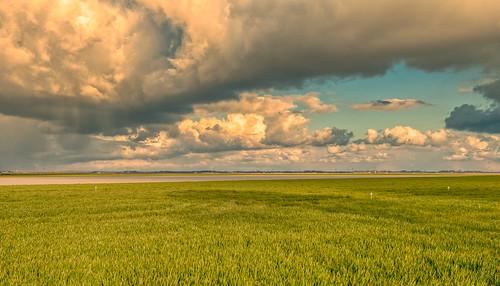 Cloud farm.