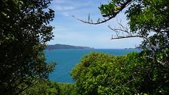 Mātiu-Somes Island (3)