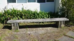 Bench in Seatoun (1)