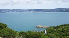 Mātiu Island lighthouse and Wellington