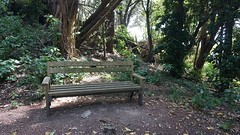 Bench on Mātiu-Somes Island (2)