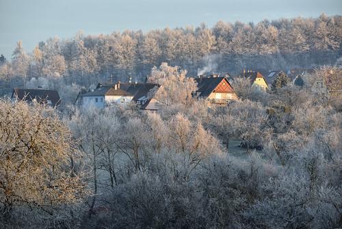 Le charme de l'hiver
