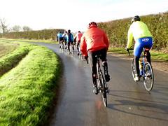 Wrinklies cycling in 2020