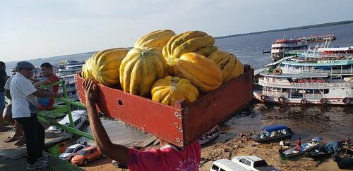 Porto Balsa Amarela - Manaus - AM - Brasil