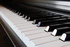 Piano Ivory Ebony Synthesizer Edited 2020