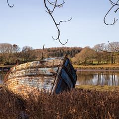 Wellspring, River Dee