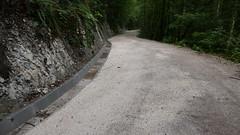 Regenwasser Kanal Spinne