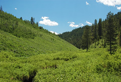 Deer Creek Valley (Preuss Range, Idaho, USA) 1