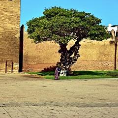 Outside the Kasbah of Marrakesh, Marocco