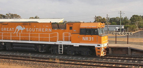NR31 LEADING 'GREAT SOUTHERN' GULGONG NSW